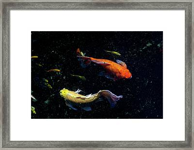 Framed Print featuring the photograph This Way by Eric Christopher Jackson