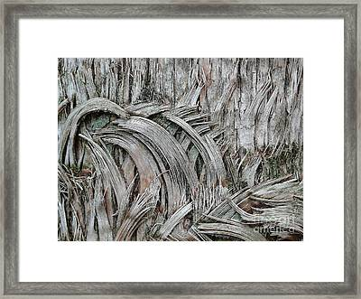 This Way 'n That Framed Print by Donna McLarty