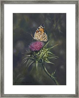 Thistle Dew Framed Print by Kathleen  Hill