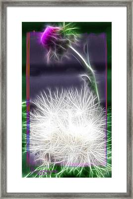 Thistle Framed Print by EricaMaxine  Price