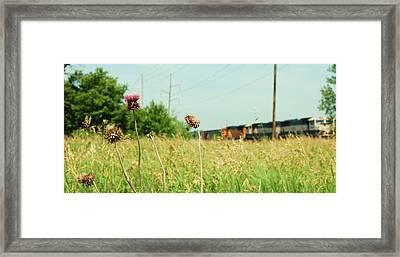 Thistle Rail Framed Print