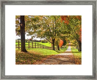 Thomas Farm Lane Framed Print