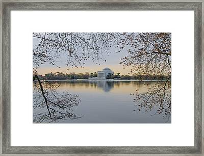 Thomas Jefferson Memorial In Spring Framed Print by Bill Cannon