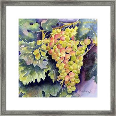 Thompson Grapes Framed Print