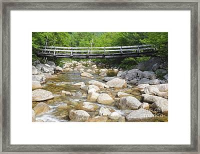 Thoreau Falls Trail - Pemigewasset Wilderness New Hampshire Framed Print