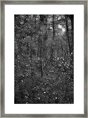 Thoreau Woods Black And White Framed Print