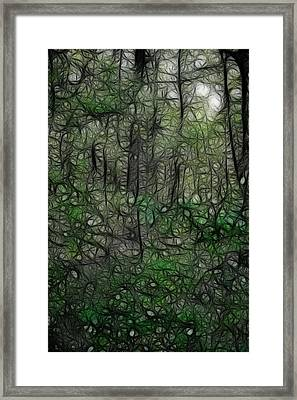 Thoreau Woods Fractal Framed Print