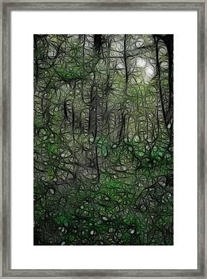 Thoreau Woods Fractal Framed Print by Lawrence Christopher