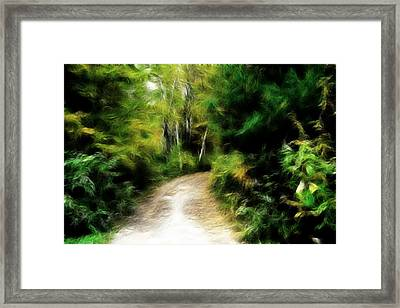 Thoreau Woods Framed Print by Lawrence Christopher