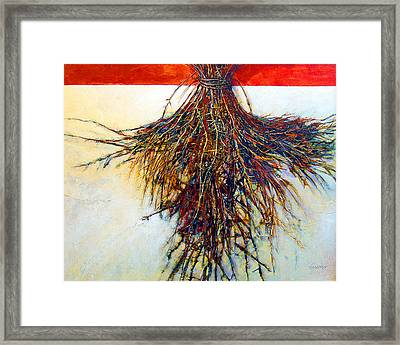 Thorn Zia Framed Print by Dale  Witherow