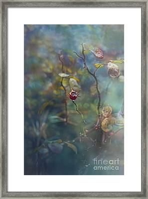 Thorns And Roses Framed Print