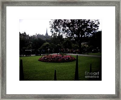 Framed Print featuring the photograph Thorns by Janelle Dey