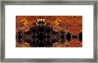 Thorns Of The Gorge  Framed Print by Christopher Phelps