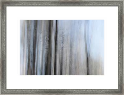 Thorny Framed Print