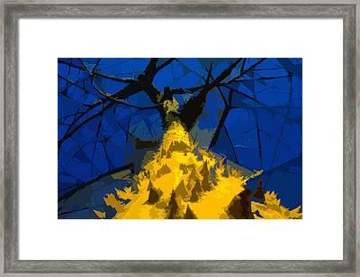 Thorny Tree Blue Sky Framed Print by David Lee Thompson