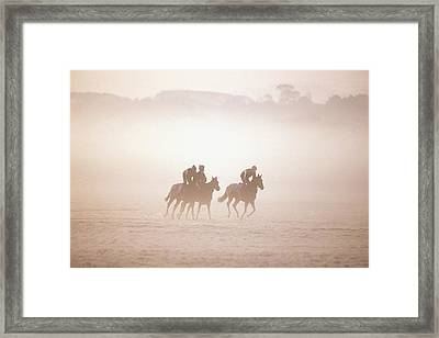Thoroughbred Horses In Training Framed Print by The Irish Image Collection