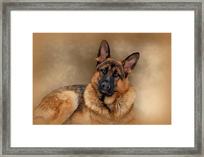 Those Eyes Framed Print by Sandy Keeton