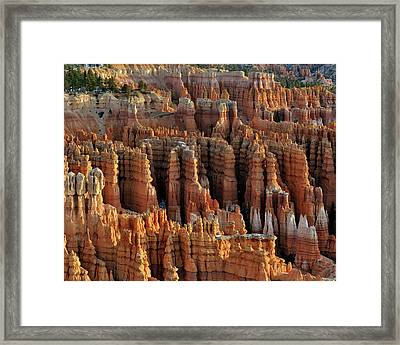 Those Hoodoo's.  Bryce Canyon Framed Print by John Rav
