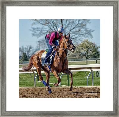 Thoughbred Workout Framed Print