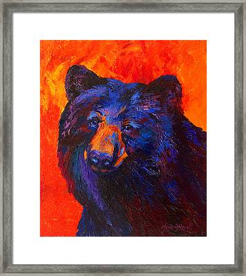 Thoughtful - Black Bear Framed Print by Marion Rose