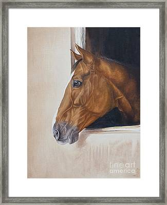 Thoughtful Simba Framed Print by Pauline Sharp