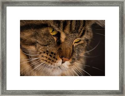 Thoughtfulness Framed Print