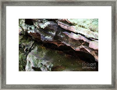Thoughts Framed Print by Amanda Barcon