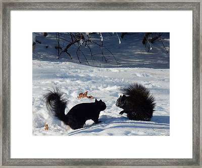 Thoughts Framed Print by Betty-Anne McDonald