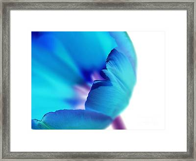 Thoughts Of Hope Framed Print by Krissy Katsimbras
