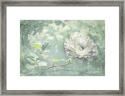 Framed Print featuring the photograph Thoughts Of You by Linda Lees