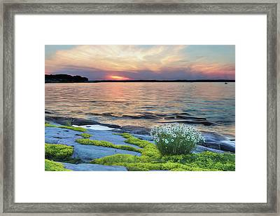 Thousand Islands Bliss Framed Print by Lori Deiter