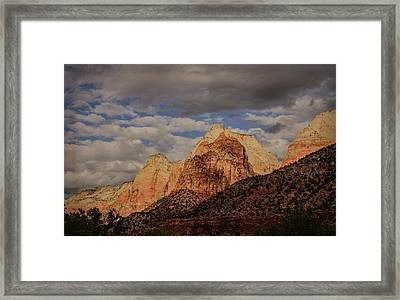 Threatened Framed Print by Jim Cook