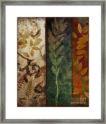Three Autumns Framed Print by Mindy Sommers