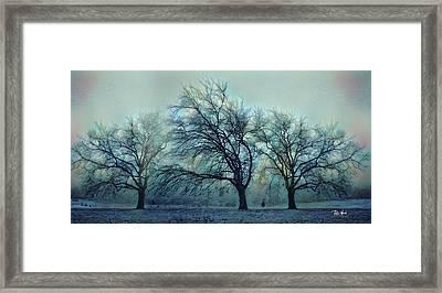 Three Bare Trees Framed Print by Russ Harris