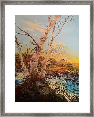 Three Birches Framed Print