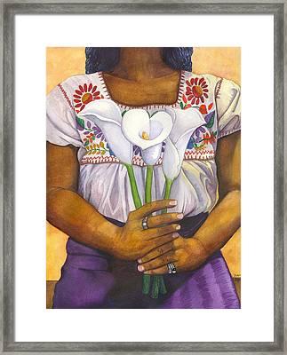 Three Calla Lilies Framed Print