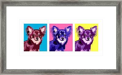 Three Chihuahuas Framed Print by Laura Sotka