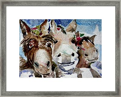 Three Christmas Donkeys Framed Print by Mindy Newman