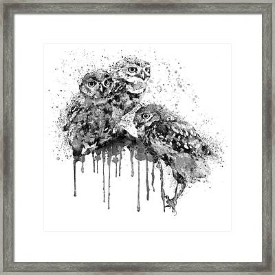 Three Cute Owls Black And White Framed Print by Marian Voicu