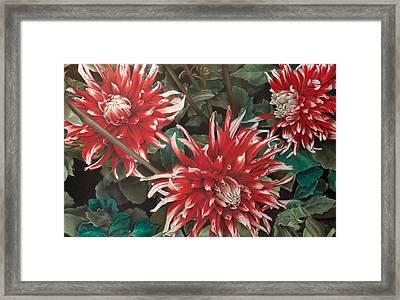 Three Dahlias Framed Print by Greg Stair