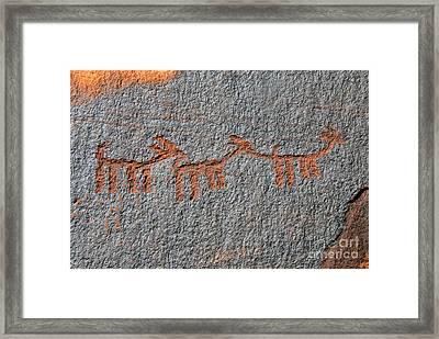 Three Deer Framed Print by David Lee Thompson