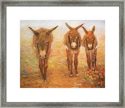 Three Donkeys Framed Print by Loretta Luglio