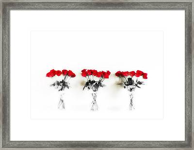 Three Dozen Roses Framed Print by Scott Pellegrin