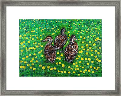 Three Ducklings Framed Print by Valerie Ornstein