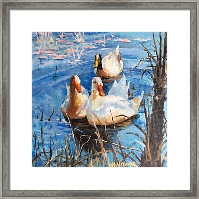 Three Ducks Framed Print