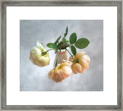 Framed Print featuring the photograph Three English Roses by Louise Kumpf
