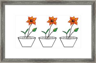 Three Flowers In A Row Framed Print