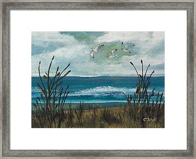 Three Gulls Framed Print