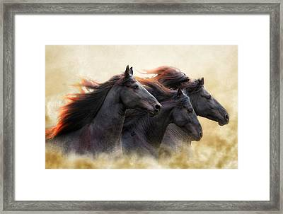 Three Horse Power Framed Print by Ron  McGinnis