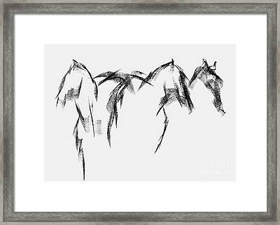 Three Horse Sketch Framed Print